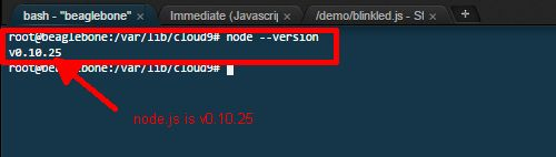 Get node.js version