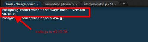 Get node.js version
